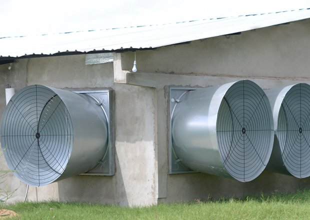 """54"""" & 50"""" ventilation fan"""