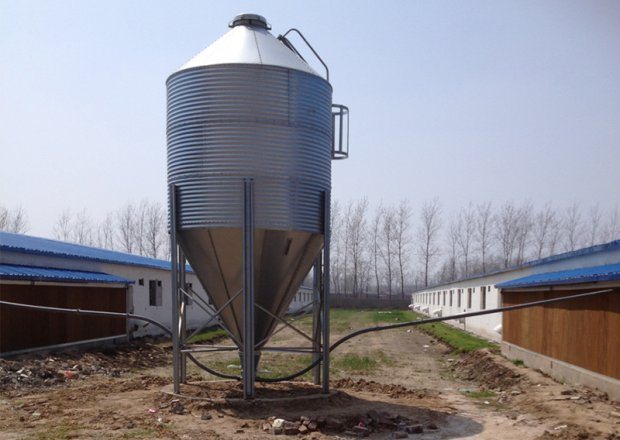 Feed weighing & conveying system