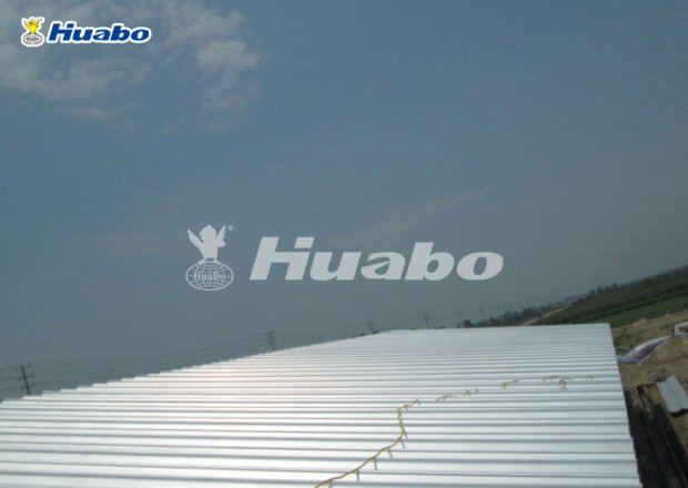 Light steel poultry shed