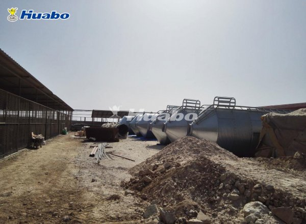 Huabo's turnkey poultry broiler farm project in Qatar.