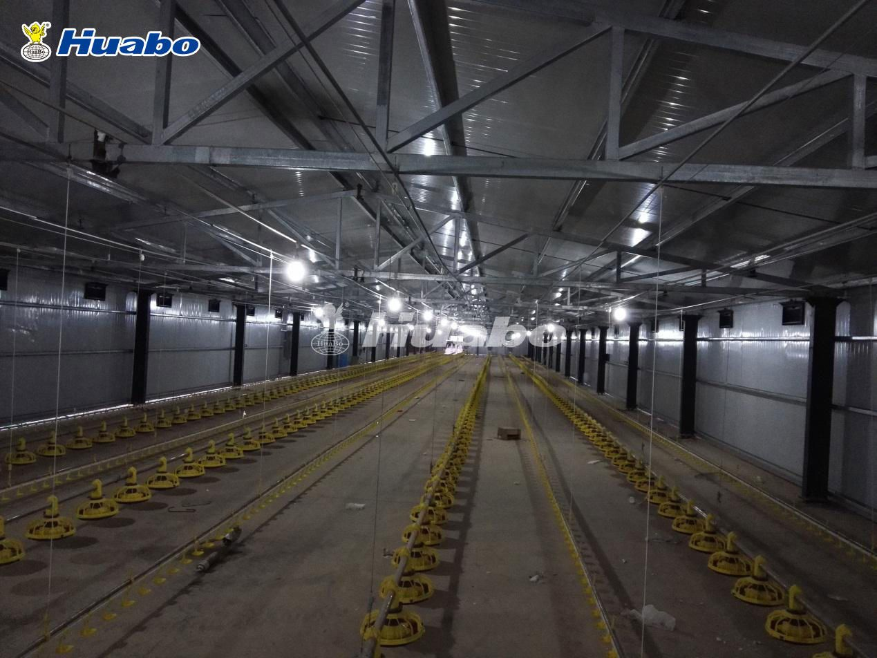 Turnkey Poultry Farm Project In Qatar